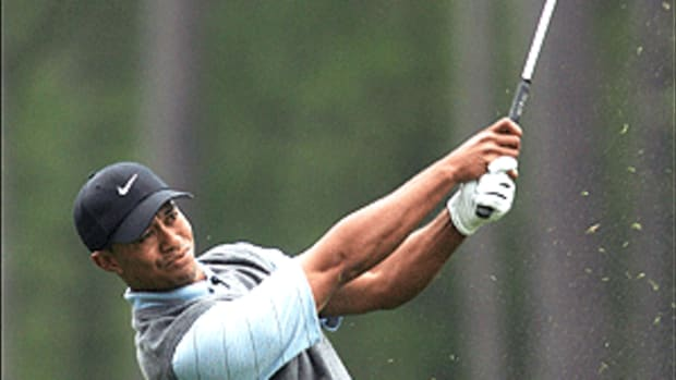 Woods-4.9.gif
