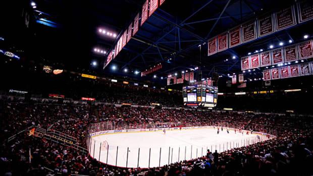 red-wings-arena-view.jpg