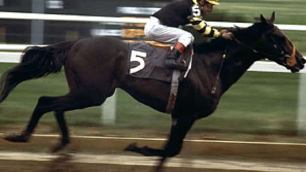 seattle-slew.jpg