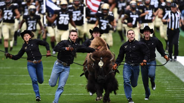 Colorado's mascot has officially retired, but he'll be on display