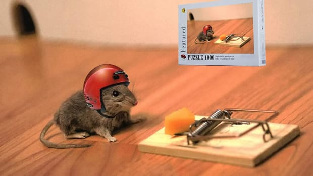 Image result for cheese mouse trap