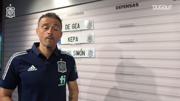 Luis Enrique uses car number plates to announce Spain squad