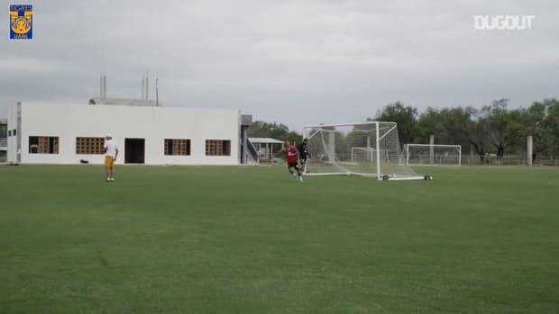 Tigres's game in training