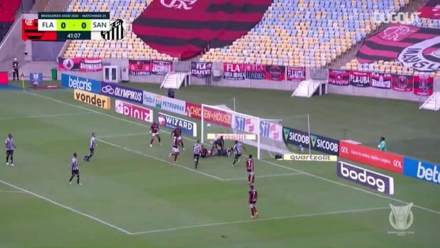 Highlights: Flamengo 4-1 Santos