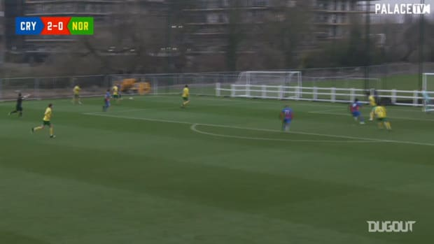 Sion Spence's incredible volley vs Norwich