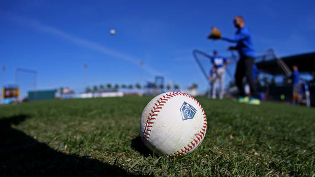 mlb spring training
