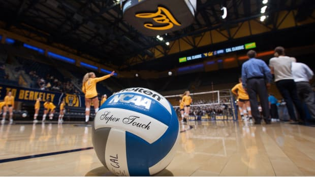 Cal volleyball at Haas Pavilion