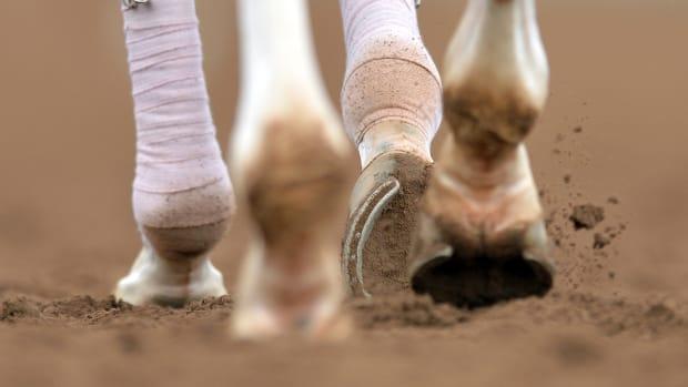 horse-racing-doping-scandal