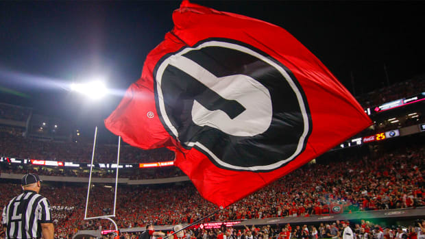 georgia-bulldogs-flag