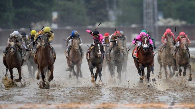 Horse Doping thumbnail