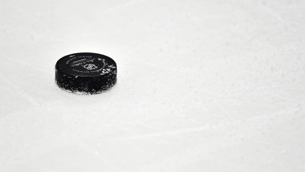 The NHL plans to test players for COVID-19 daily if games resume.