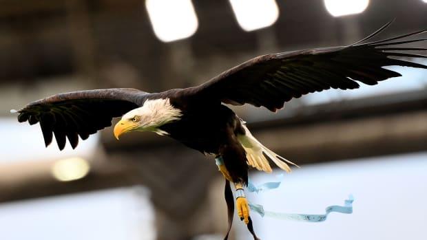 Lazio's eagle mascot