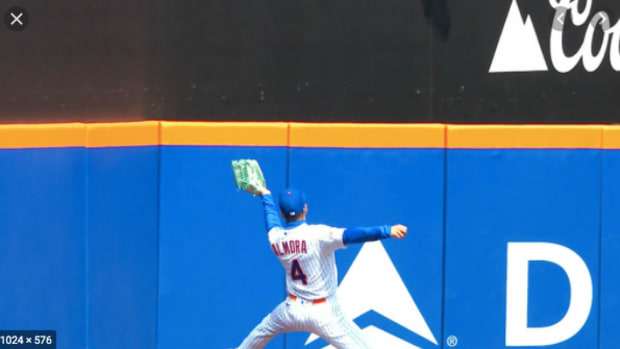 Mets outfielder Albert Almora makes a great catch to save multiple runs