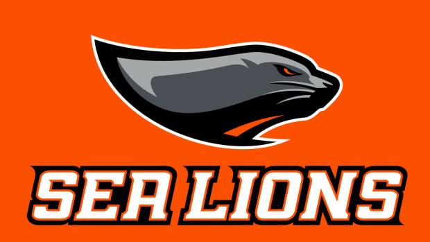 TSL-Sea-Lions