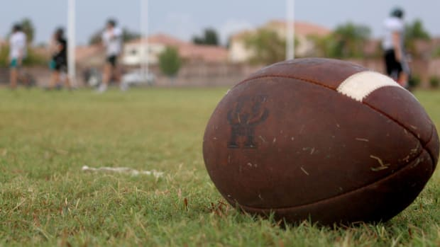 A football sitting in grass