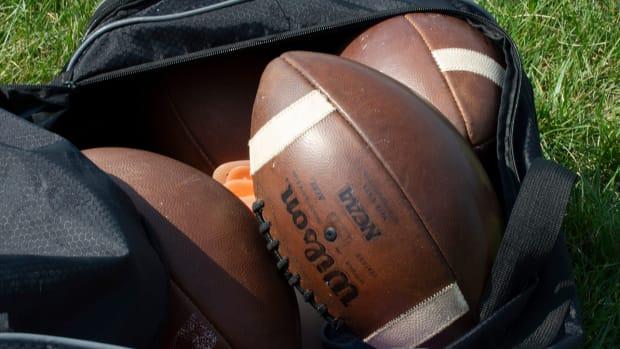 Footballs in a bag.