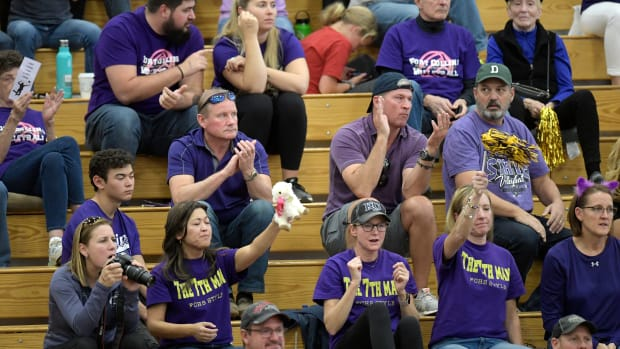 Volleyball Fans