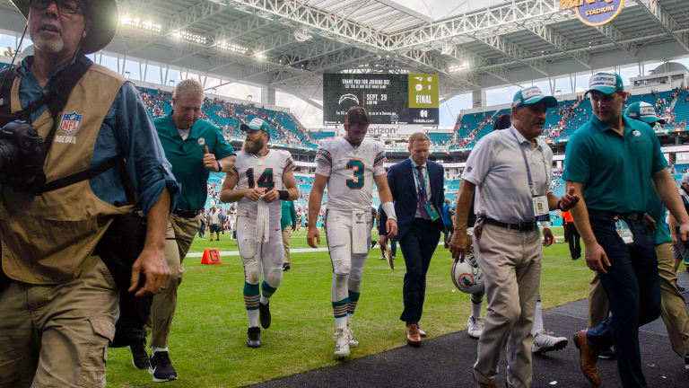 """In Praise of """"Processing"""": Why the Dolphins Deserve Some Respect"""