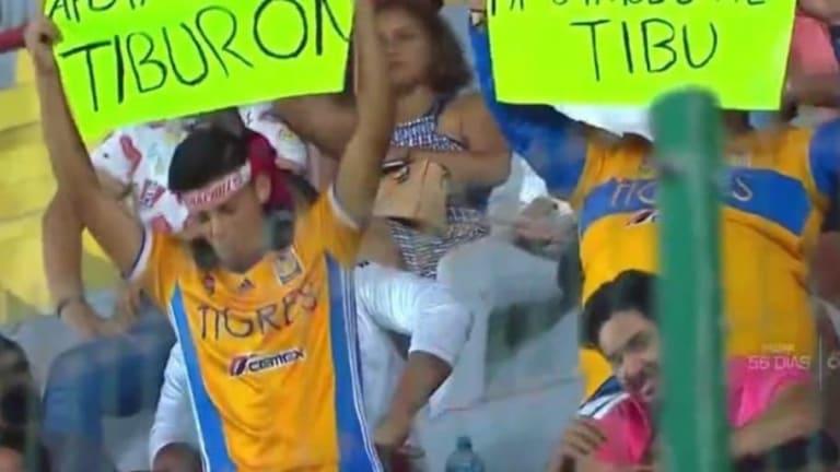 Los aficionados de Tigres que apoyaron a Veracruz en su partido contra Rayados