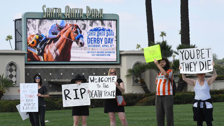 Hall of Fame Trainer Banned After 30th Horse Dies at Santa Anita Park
