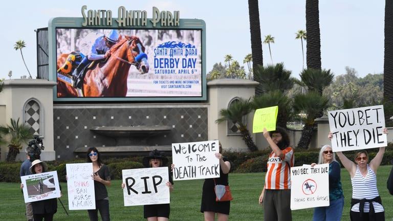 26th Thoroughbred Horse Dies at Santa Anita Since Dec. 26