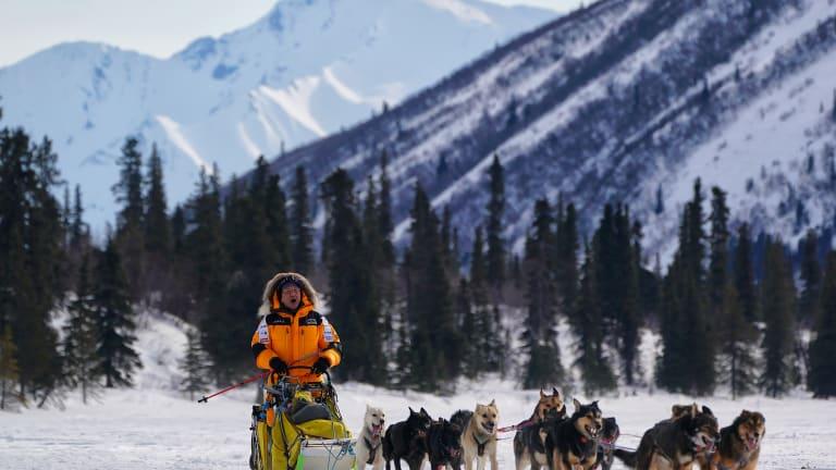 Taking on the 2019 Iditarod
