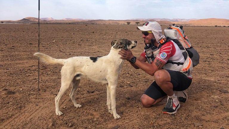 Friday's Hot Clicks: An Extremely Badass Dog Has Run Over 100 Miles Through the Sahara