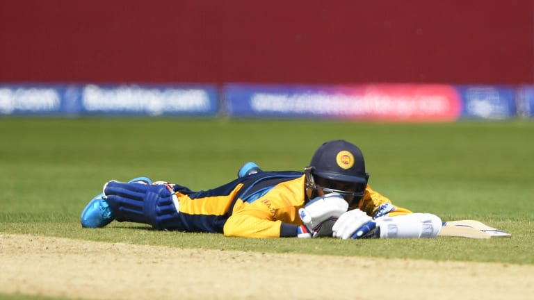 Bees Invade Pitch at Cricket World Cup, Cause Delay in Sri Lanka and South Africa Match