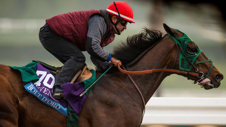 Kentucky Derby Favorite Named After Usain Bolt Since 'The Notorious One' Is Trademarked