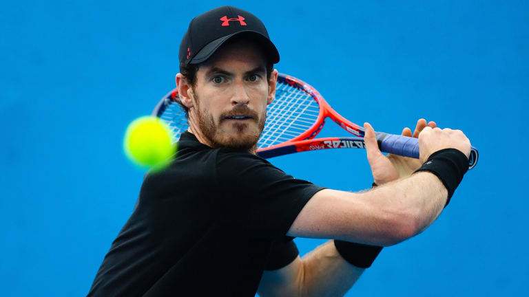Injured Andy Murray Withdraws from Brisbane, Considers Surgery