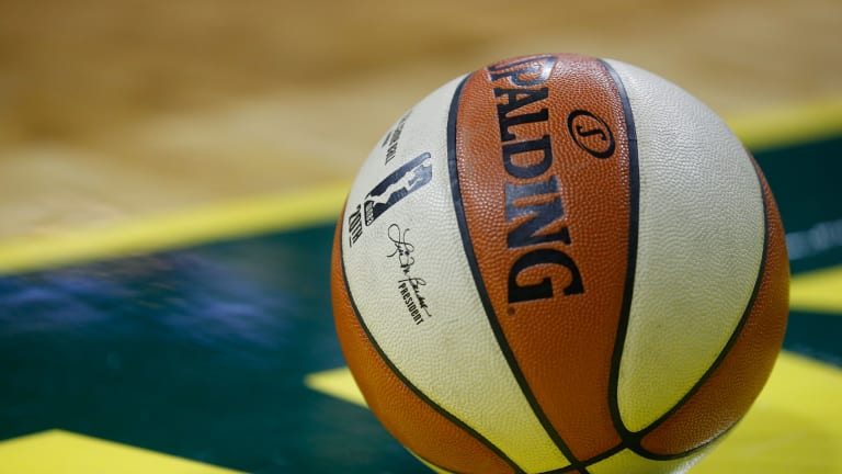 Which Gamecocks Will Be In This Year's WNBA Playoffs