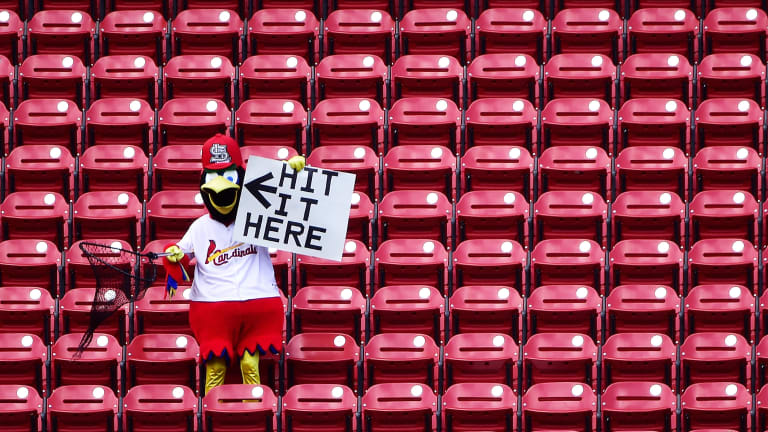 Know Your Enemy: St. Louis Cardinals
