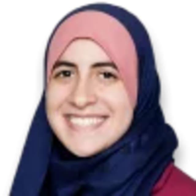 Alaa Abdeldaiem