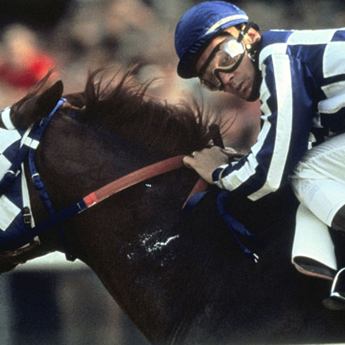 Pure Heart The Thrilling Life And Emotional Death Of Secretariat Sports Illustrated