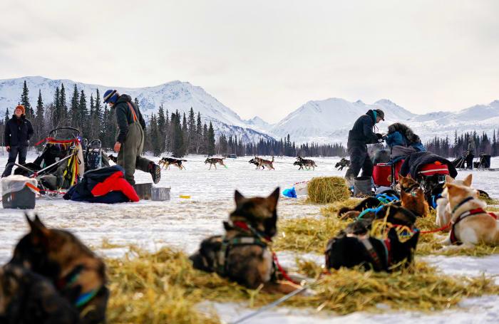 2019_Iditarod_00009.JPG