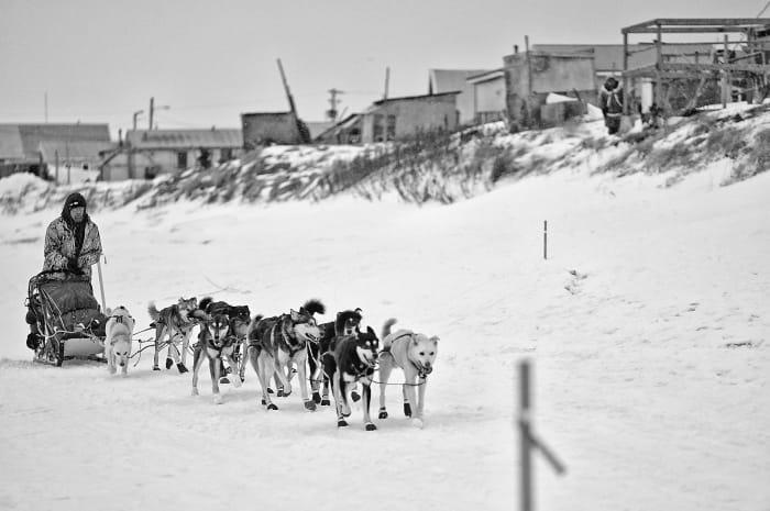 2019_Iditarod_00019_new.jpg