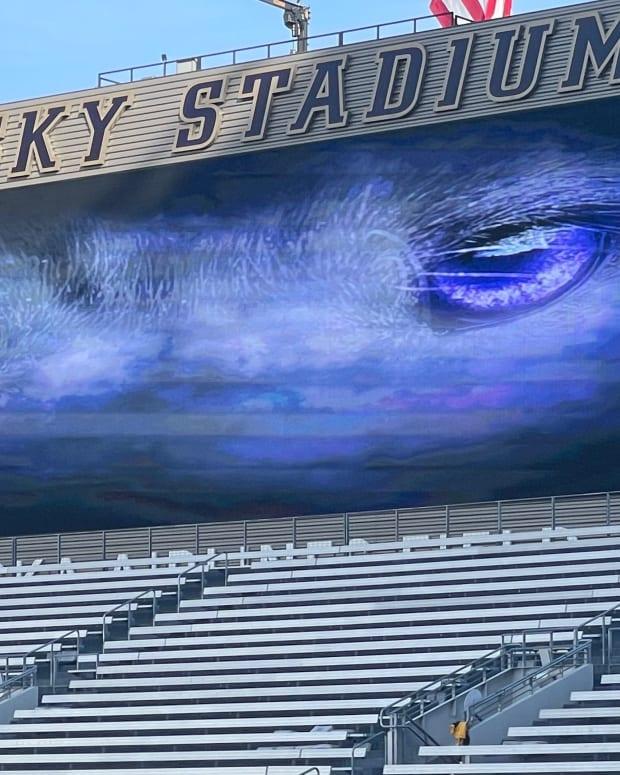 Huskies eyes look down on the field.