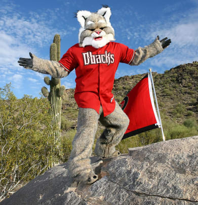 Arizona-Diamondbacks-mascot-D-Baxter-the-Bobcat.jpg