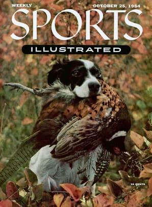 1954-1025-Bird-Dog-English-Setter-006272010r.jpg