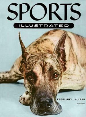 1955-0214-dog-Great-Dane-Autopilot-006272026r.jpg