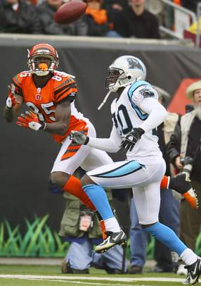 Bengals 17, Panthers 14