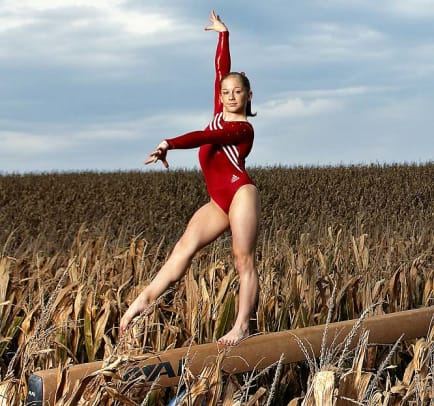 Shawn Johnson, Gymnastics