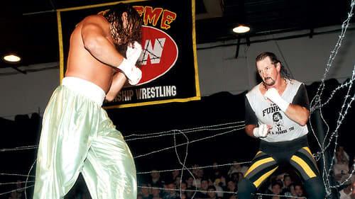 Terry Funk_courtesy WWE