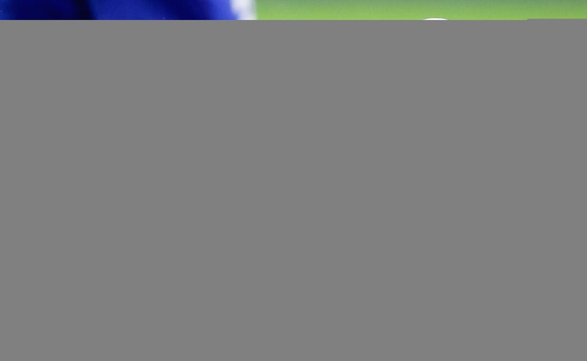 olympique-lyonnais-v-tsg-1899-hoffenheim-uefa-champions-league-group-f-5c87fedb9a185a5f1f000001.jpg