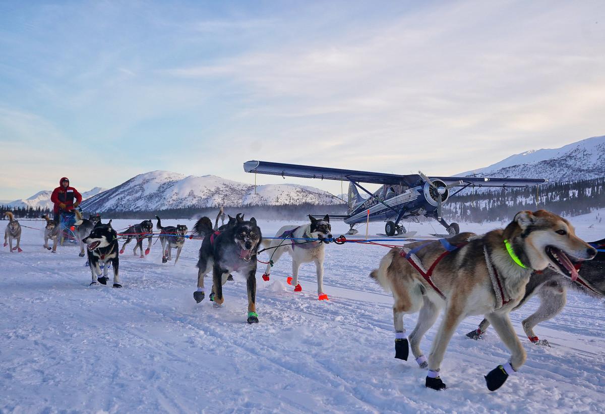 2019_Iditarod_00005.JPG