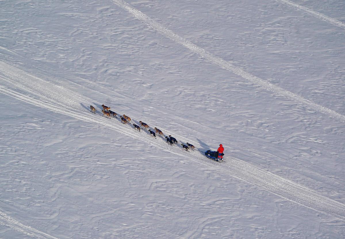2019_Iditarod_00006.JPG