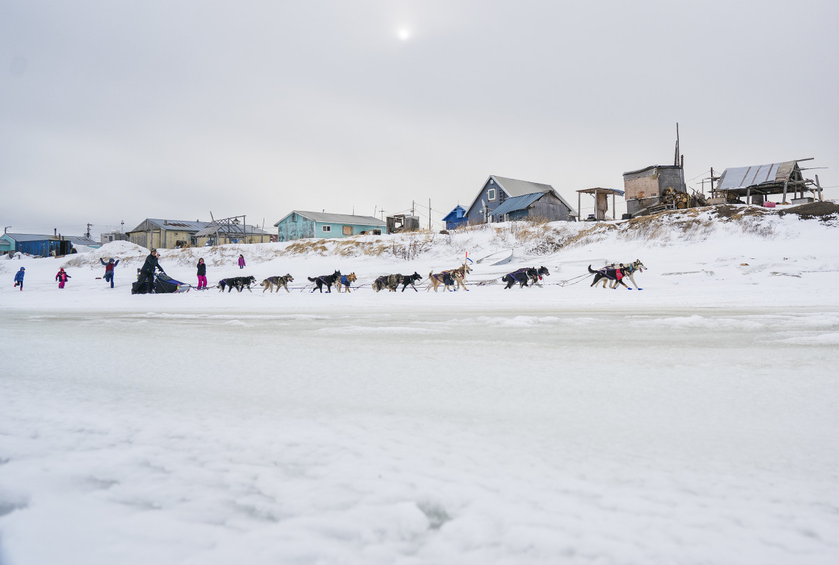 2019_Iditarod_00018.JPG