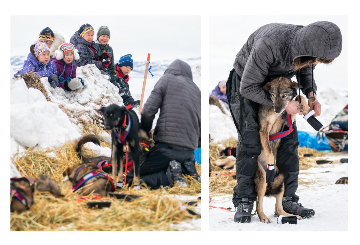 2019_Iditarod_00023.JPG