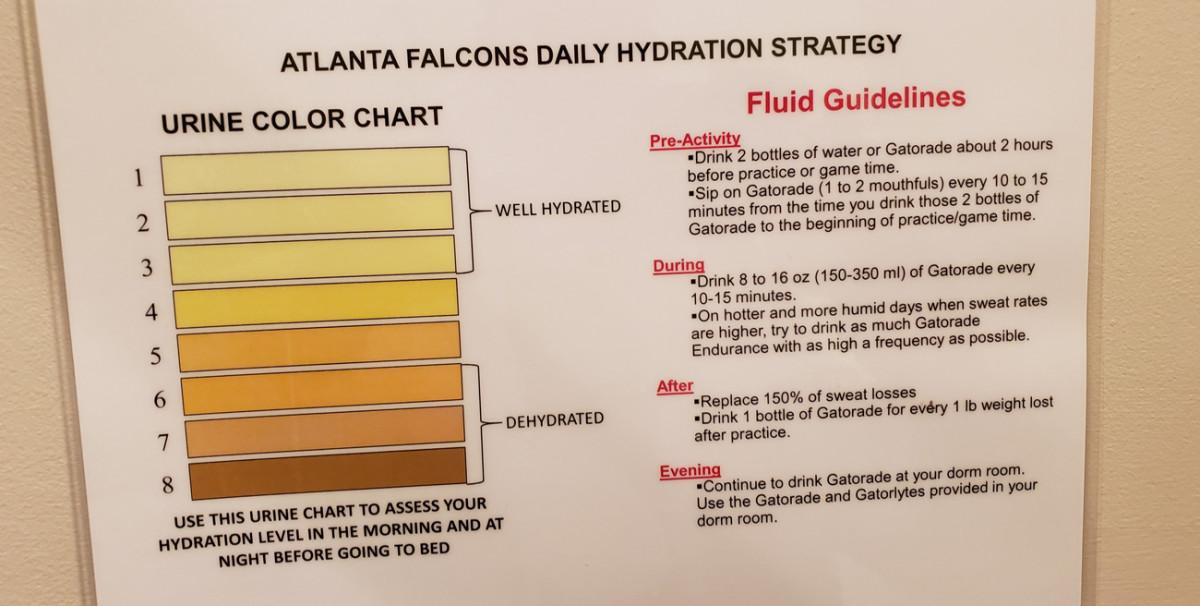 falcons-roomie-camp-hydration-urine-chart.jpg