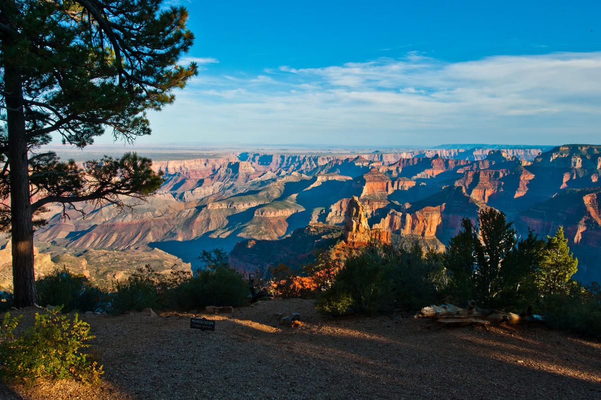 grand-canyon-trail-running.jpg